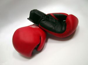 c__data_users_defapps_appdata_internetexplorer_temp_saved-images_279226_boxing_gloves_and_dumbells_1